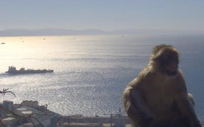 Gibilterra, la penisola che non c'è