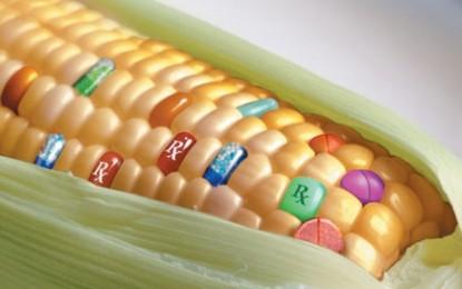 """""""Pane e Bugie"""": educazione alimentare e cattiva informazione"""