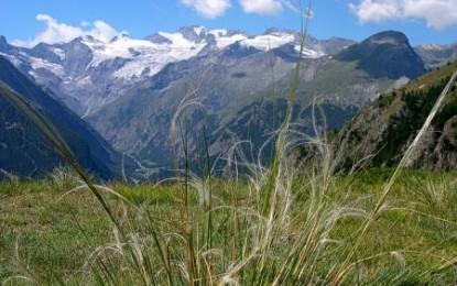 Parchi: gli italiani conoscono l'importanza delle aree naturali protette