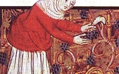 Storia di Genova: cibi, ingredienti e prelibatezze dell'antichità