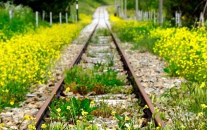 Ferrovie dimenticate: appello per il recupero delle linee dismesse