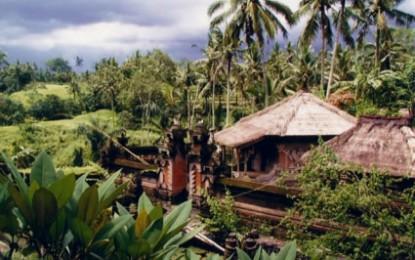 Indonesia, accusato di blasfemia rischia 5 anni di carcere