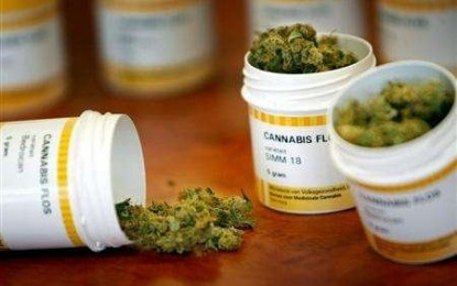 Cannabis terapeutica: consentita dalla legge, ostacolata dalla burocrazia