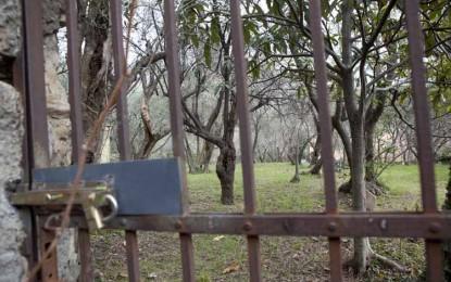 Agricoltura a Genova, prezzi dei terreni troppo elevati: il dossier