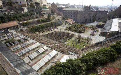 Valletta Carbonara, il lavoro dei volontari e la prima apertura al pubblico: il progetto prende forma