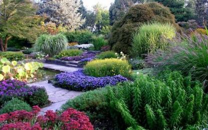 Villa Doria e Durazzo Pallavicini a Pegli: il sogno si chiama giardino botanico