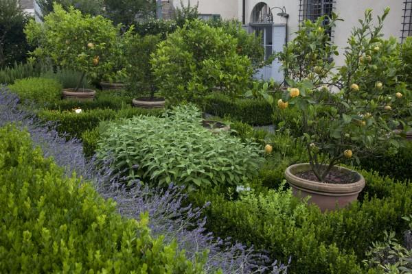 Oltre Il Giardino Al Via La Rubrica Verde Di Era Superba