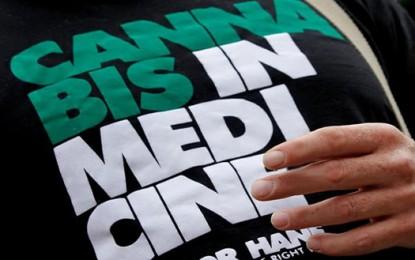 Liguria, cannabis terapeutica: quando la disinformazione la fa da padrona