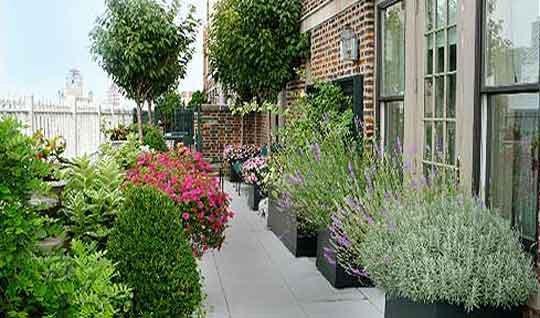 Oltre il giardino la terrazza in citt for Giardino in terrazza