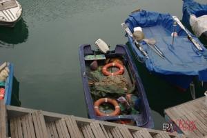 barche-pesca-d1