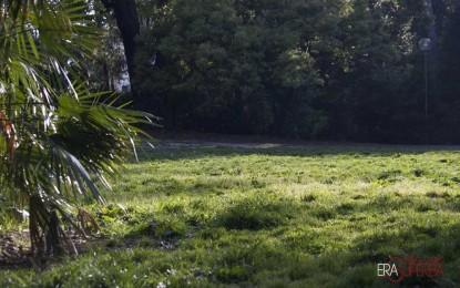 Guerrilla gardening: una giornata per aiutare il verde in città
