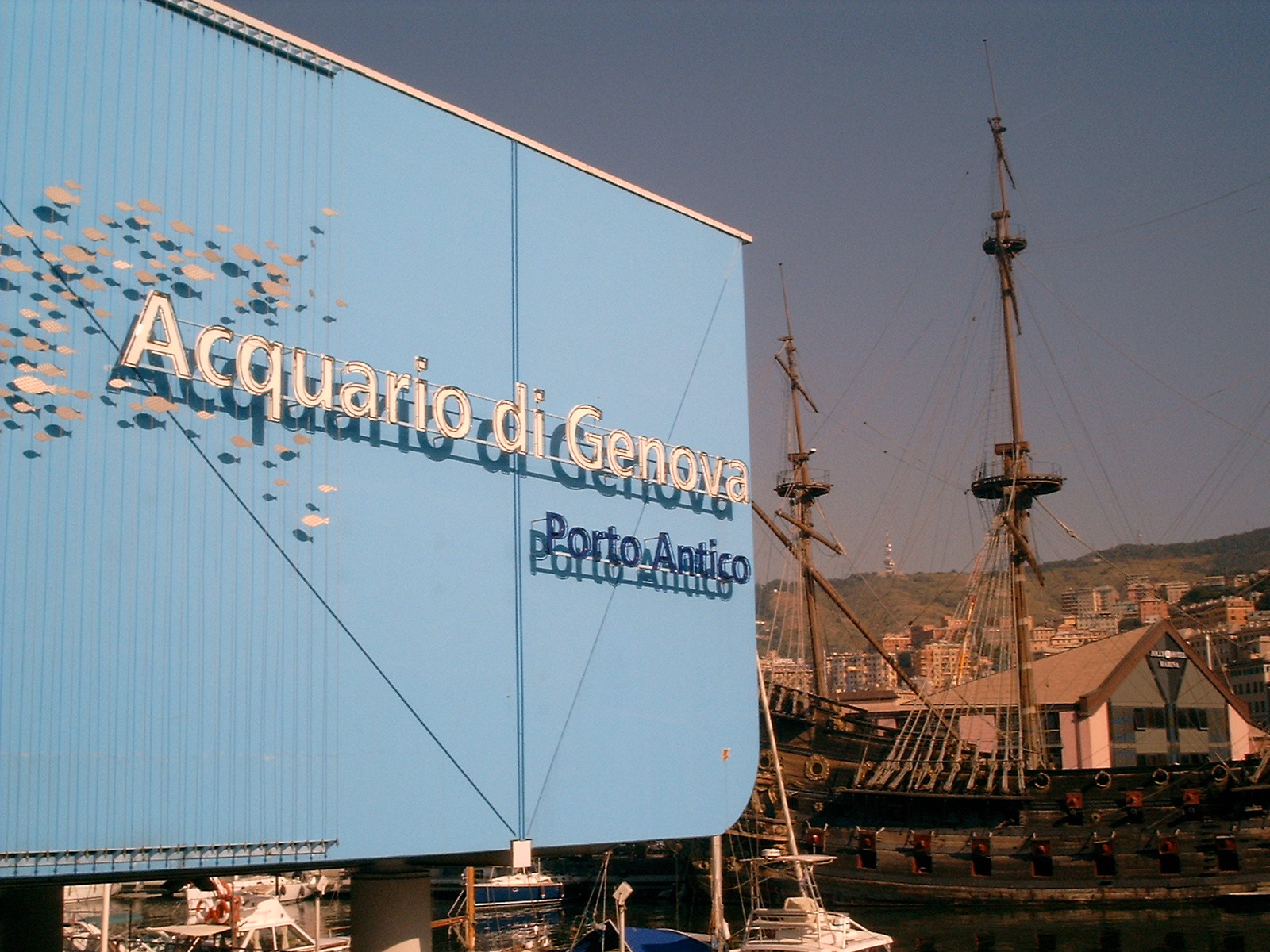acquario di genova, oltre 2 milioni di debito con porto antico spa