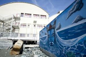 Murales di Giuliogol in passeggiata a mare di Voltri