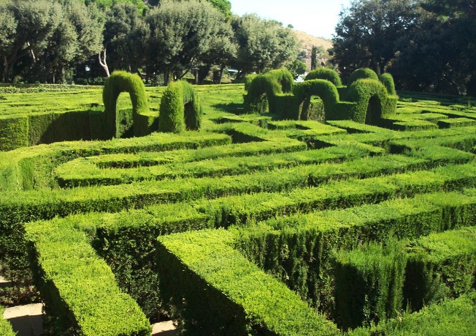 Una particolare metodologia di potatura delle piante l for Giardino labirinto