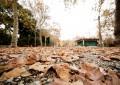 Acquasola, il punto sulla riqualificazione in attesa del nuovo regolamento per i Parchi storici
