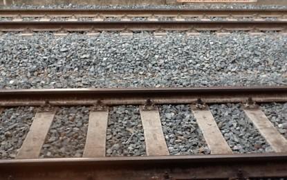 Officine Cargo di Rivarolo, per salvarle presto un tavolo tra Comune, Regione e Trenitalia