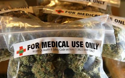 Liguria, cannabis terapeutica: nuova proposta di legge regionale
