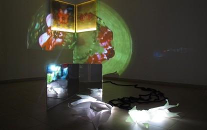 L'effimero colto dal velo d'organza: mostra in Sala Dogana