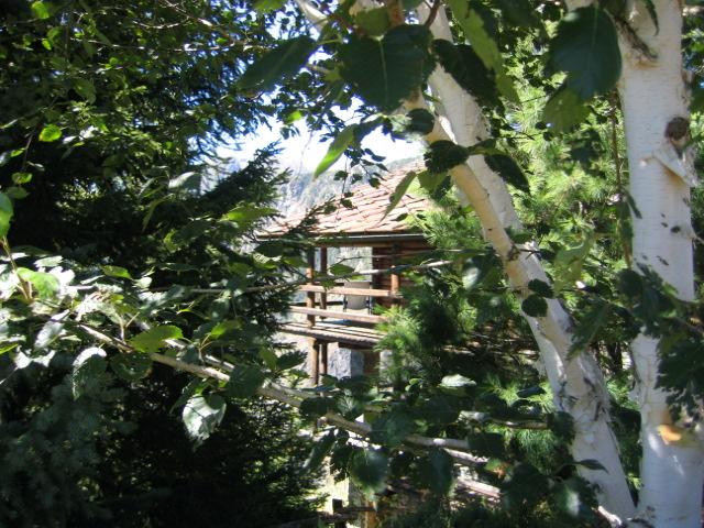 Consigli per realizzare un giardino nella casa in montagna - Giardini di montagna foto ...