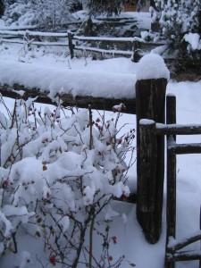 Consigli per realizzare un giardino nella casa in montagna - Riscaldare velocemente casa montagna ...