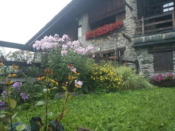 Consigli per realizzare un giardino nella casa in montagna - Giardini di montagna ...
