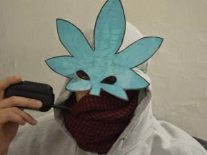 cannabis-marjiuana-terapeutica-coltivazione (16)