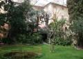 """La """"Strada a Monte"""" di Cornigliano, un percorso fra le antiche ville della delegazione ponentina"""