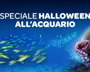 All'Acquario di Genova Halloween inizia il 15 ottobre