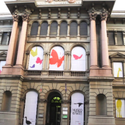 museo-doria-storia-naturale