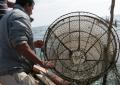 """Slow Fish e la """"rete siamo noi"""". Presentata la nuova edizione della kermesse dedicata alla cultura del mare"""
