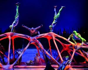 Alis: i migliori artisti del Cirque du Soleil al 105 Stadium