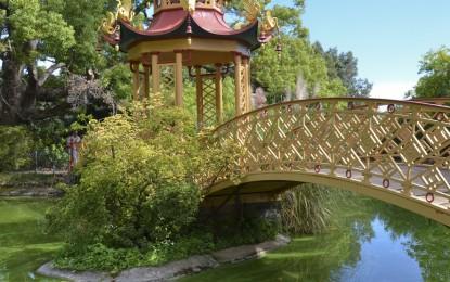 Villa Pallavicini, il parco più bello d'Italia. Pegli capitale italiana della botanica